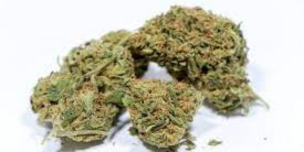 What Are The Long-Term Effects Of Cannabis? Get The Info Here